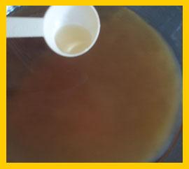 how to make kombucha australia